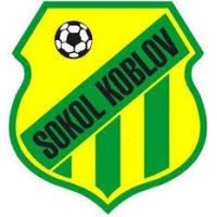 TJ Sokol Koblov